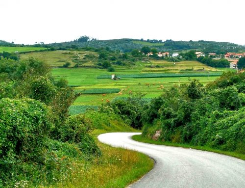 Rutas de senderismo guiadas